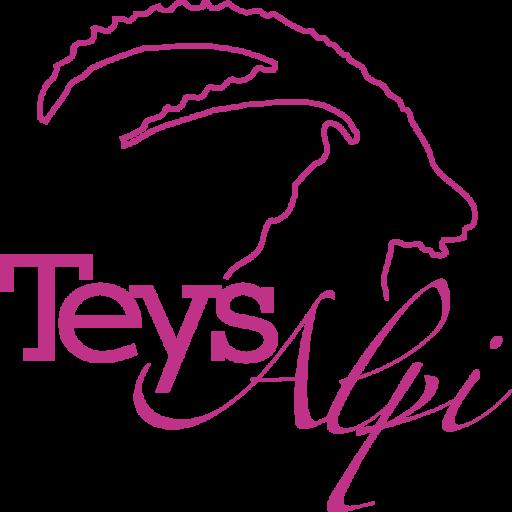 Team Teysalpi